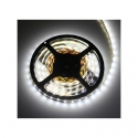 barwa światła -Zimna TAŚMA PREMIUM  300 LED IP20 , 30 W Made in Polannd
